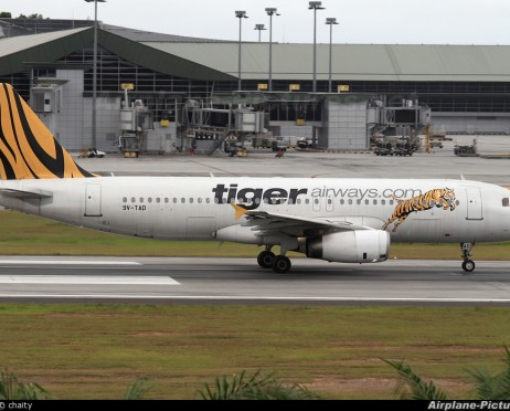 Foto TIGER AIRWAYS
