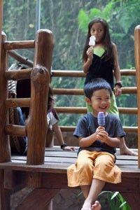 Jungle Camp Bali