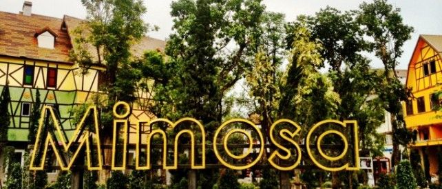Admission Ticket to Mimosa Pattaya