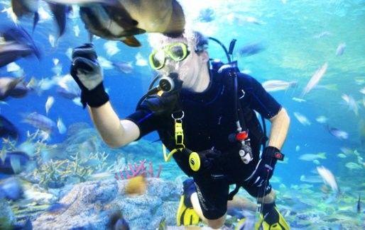 Admission to Underwater World Pattaya
