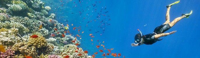 harga tiket Bali Diving Tour - Serangan