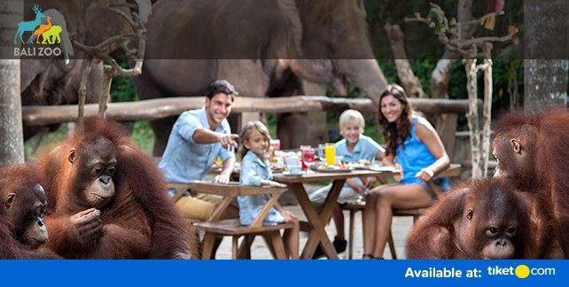 harga tiket Bali Zoo Entrance Ticket