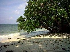 Pantai Bukit Berahu