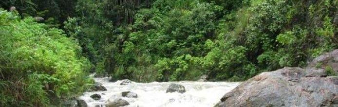 Hutan Wisata Gurah