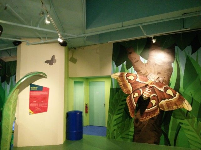 Entry to the Butterflies Up-Close Exhibit