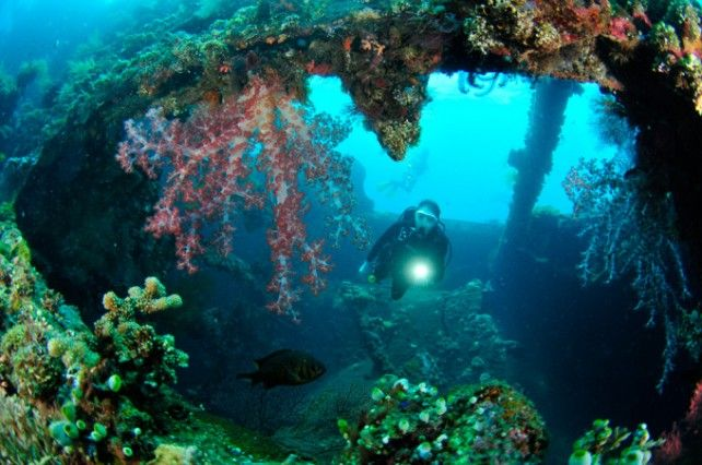 Full-day Guided Scuba Diving Experience in Tulamben with Transfer