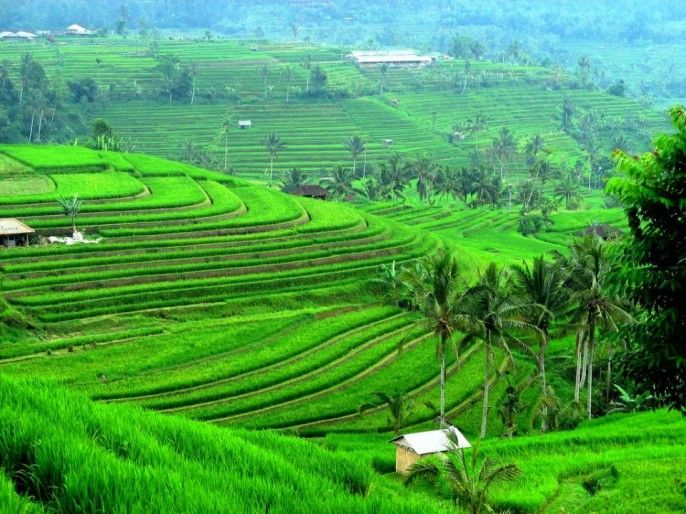 harga tiket Full-day Join-in Batukaru Mountains and Temple of Luhur Tour