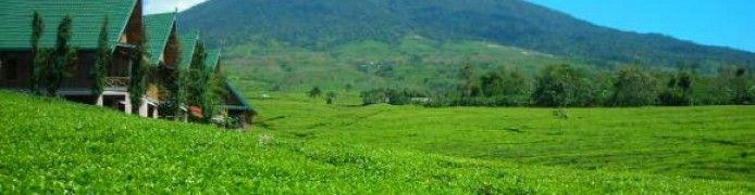 Mount Dempo