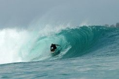 Pulau Siberut