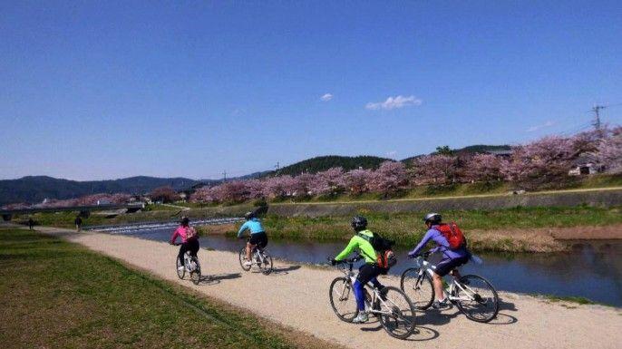 harga tiket Half-day Kyoto Cycling Tour