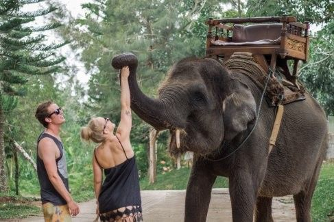 harga tiket Half-day of Trekking Adventure on Board the Elephant