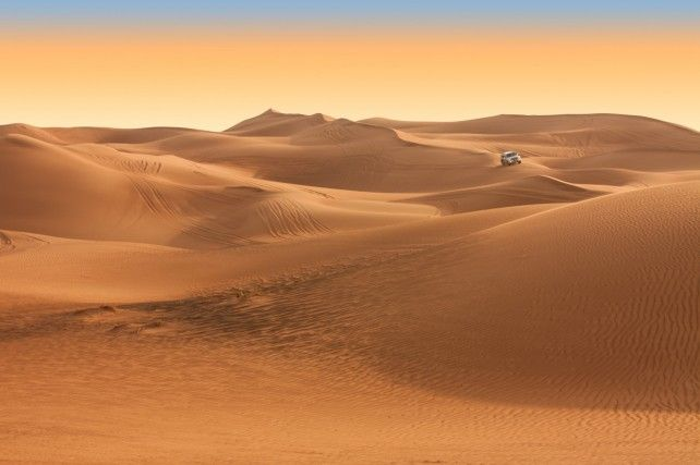 Half-day Red Dune Safari in Dubai with Quad / Buggy Ride and Dinner
