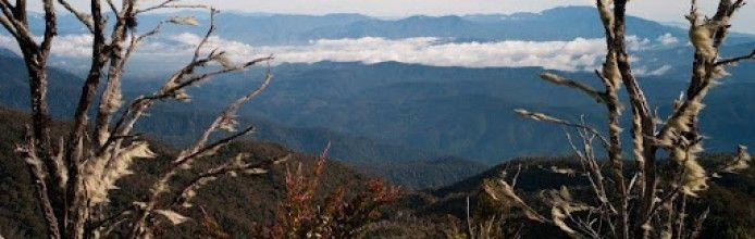 Gunung Bandahara