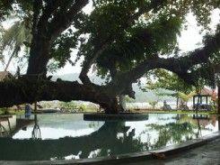 Ketapang Resort