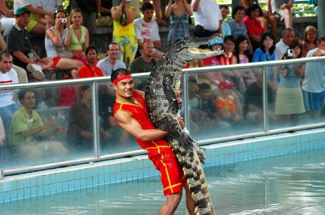Million Years Stone Park and Pattaya Crocodile Farm Ticket
