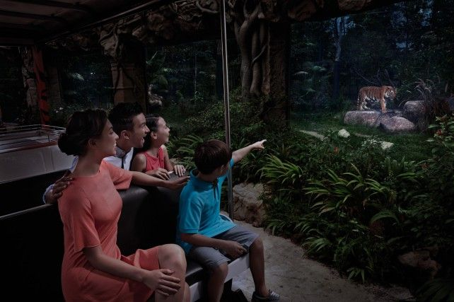 Night Safari Singapore: Indian Buffet Dinner