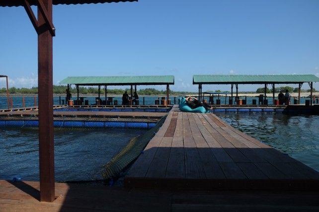Ocean Club Bali