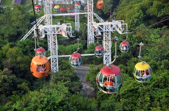 Ocean Park Admission with Return Transfers