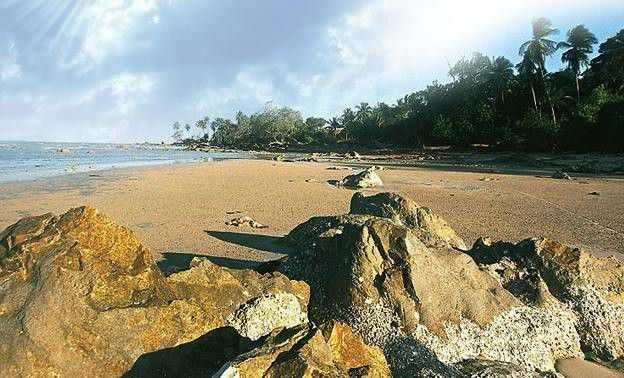 Pantai Tanjung Bunga