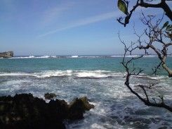 Pantai Pulau Manuk