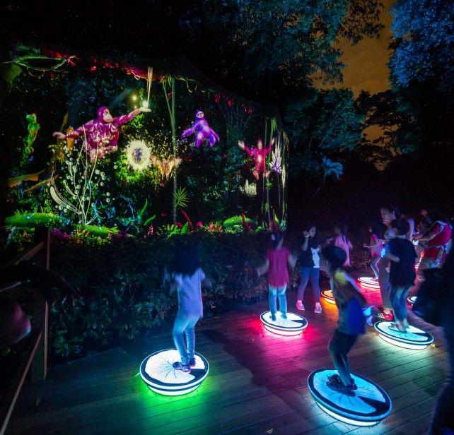 Rainforest Lumina Admission