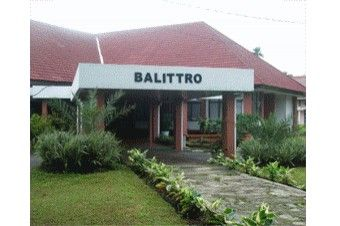 BALLITRO