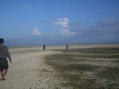 Pulau Pasir Putih Awelolong