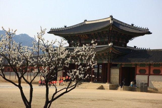 Seoul Morning City Tour