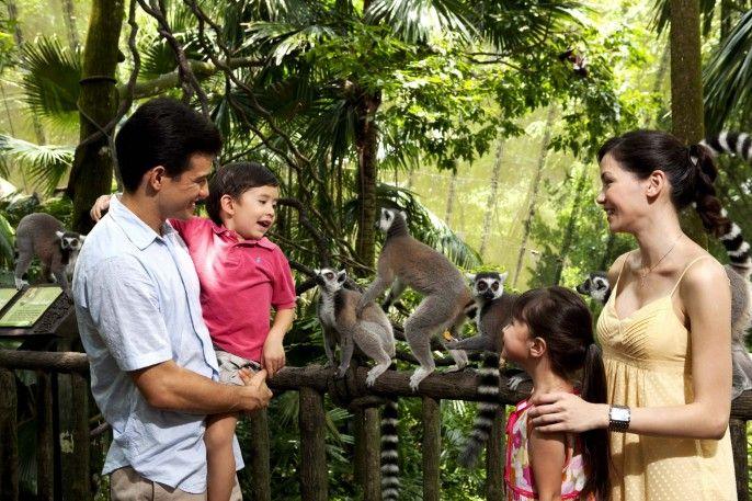 harga tiket Singapore Zoo