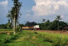 Sri Tanjung